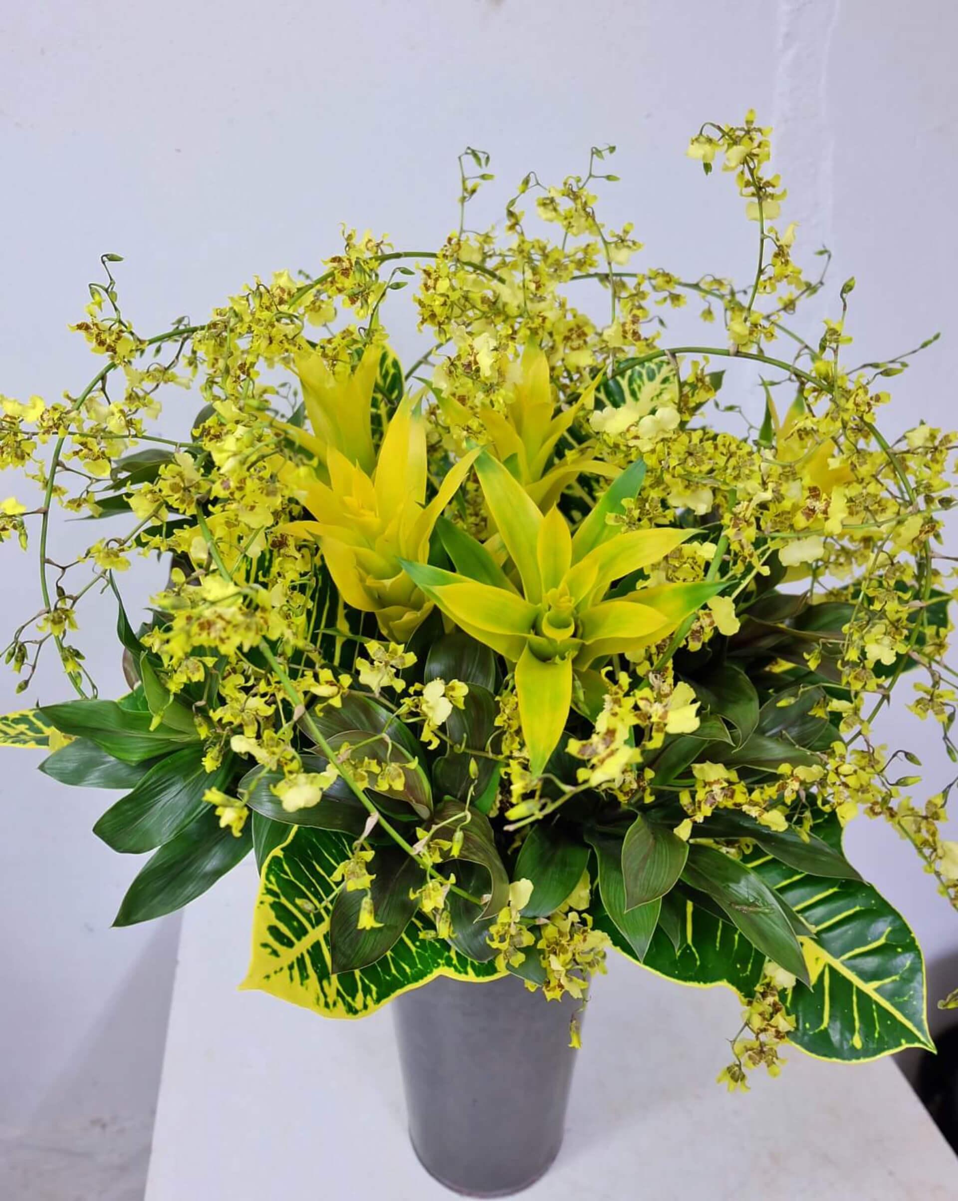 arrangement_36