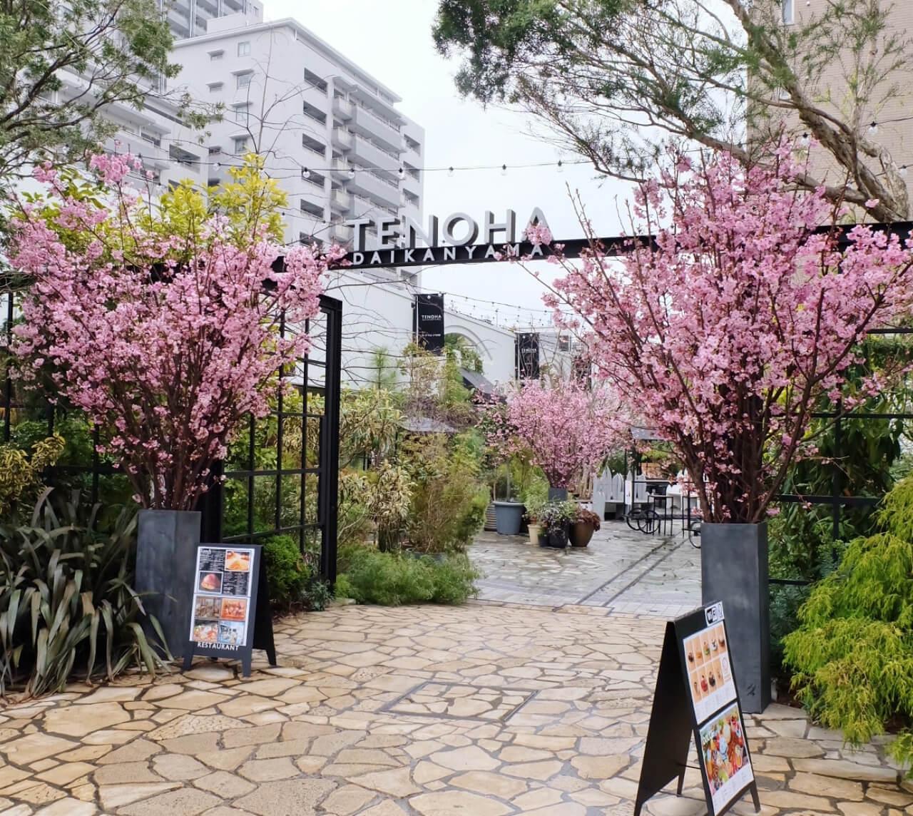 spring_26