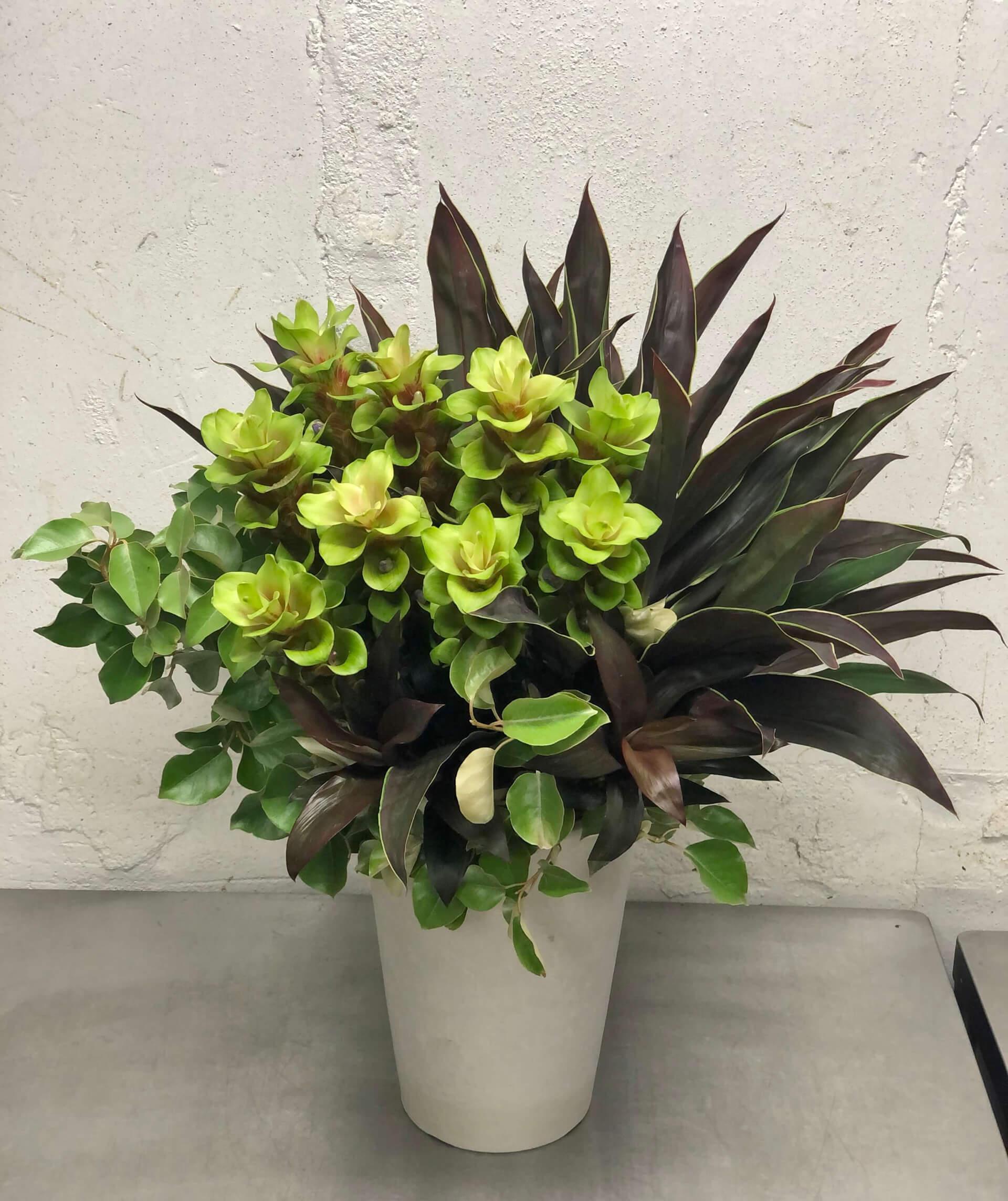 arrangement_87