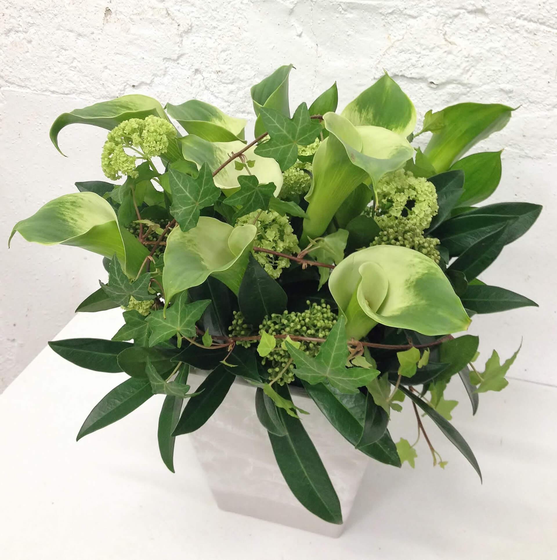 arrangement_91